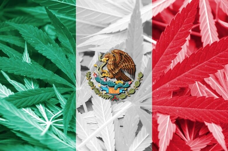 Mexico Cannabis Bill