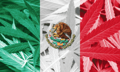 Mexico Passes Recreational Cannabis Bill