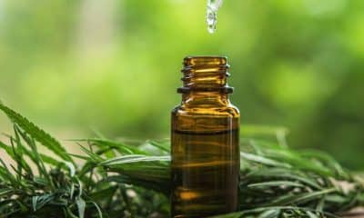CBD Oil Can Be Used to Treat Seizures; Experienced in California